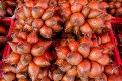 Plam-Frucht Stockfoto