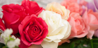 Plama multicolor róża bukiet Obrazy Royalty Free