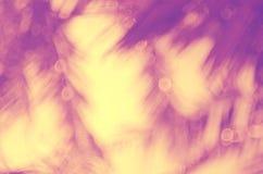 Plama palmowego liścia abstrakta tropikalny tło Obrazy Royalty Free