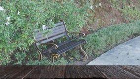plama wizerunek ławka dla relaksować obok przejścia w parku z Obraz Royalty Free