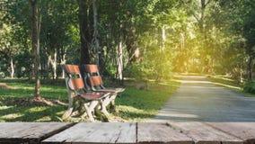 plama wizerunek drewniana ławka dla relaksować obok przejścia w parku Obraz Stock
