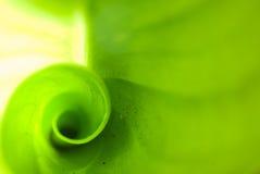 plamy abstrakcjonistyczna zieleń Obrazy Stock
