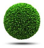 Planète d'herbe Photo libre de droits