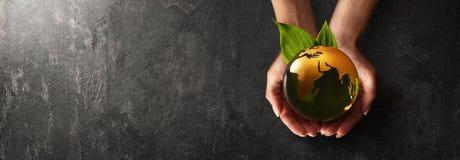 Planète verte dans des vos mains l'environnement de concept de soin de fond a isolé le petit blanc d'arbre de prise Photo libre de droits