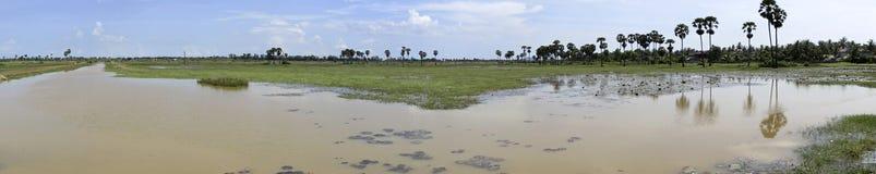 Planície de inundação Foto de Stock