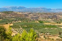 Planície de Messara Crete, Greece fotografia de stock royalty free