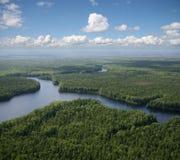Planície verde da floresta Fotografia de Stock Royalty Free