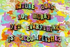 Plan accompli d'attitude de temps de nature image stock