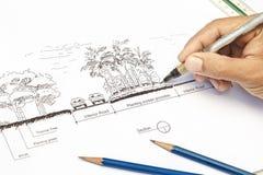 Plan de la sección del diseño del arquitecto paisajista Fotos de archivo