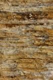 Plan de section de roche Image libre de droits