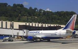 Plan des lignes aériennes de Transaero à l'aéroport international de Sotchi Image stock