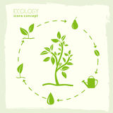 Plan design av ekologi, miljö, grön rengöring Arkivbild