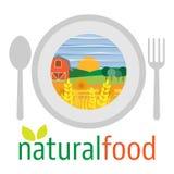 Plan design av vegetarisk mat, sunt äta och grönsakdi Arkivfoto