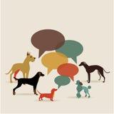 Plan designhundkapplöpning med anförandebubblor Royaltyfri Fotografi