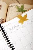 Plan en octobre Image libre de droits