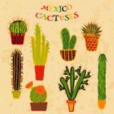 Plan färgrik illustration av mexicanska suckulentväxter och kakturs i krukor Stock Illustrationer