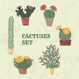 Plan färgrik illustration av suckulentväxter och kakturs i krukor Royaltyfri Illustrationer
