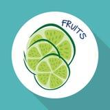 Plan illustration av fruktdesignen Royaltyfria Bilder