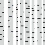 Plan illustration för björk på vit bakgrund Fotografering för Bildbyråer
