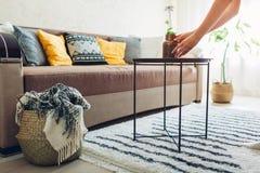 Plan inre av vardagsrum som dekoreras med korgar, v?xter och matta Soffa med kuddar och tabellen fotografering för bildbyråer