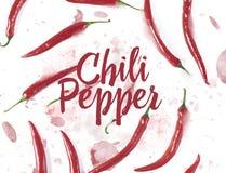 Plan lekmanna- modell för peppar för röd chili på vit bakgrund Top beskådar royaltyfria bilder
