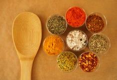 Plan lekmanna- träsked med ett sortiment av kryddor och torkade örter från över arkivbilder