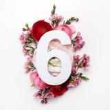 Plan mit bunten Blumen, Blättern und Nr. sechs Flache Lage Beschneidungspfad eingeschlossen Lizenzfreie Stockbilder