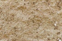 Plan och slät uttorkning för smuts efter regn Royaltyfri Fotografi