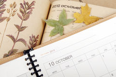 Plan in October. Plan in October and the autumn leaves beginning to fall Royalty Free Stock Images