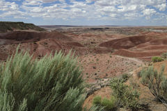 Plan_pictures_1093. Painted Desert, Petrified Forest National Park, Arizona, USA Royalty Free Stock Photos