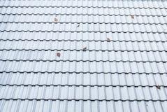 Plan rapproché à la forme onduleuse du fond de tuile de toit Photo stock