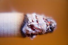 Plan rapproché allumé de la cigarette le premier Image stock