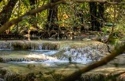 Plan rapproché avec deux branches sur chaque coin avec une série de belles cascades courtes dans la forêt dense de parc national  images libres de droits