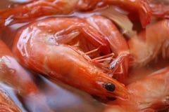Plan rapproché bouilli délicieux de crevettes Photographie stock libre de droits