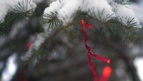Plan rapproché, branches d'un arbre de Noël couvert de neige avec la guirlande brûlante en parc banque de vidéos