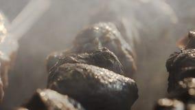 Plan rapproché Brochettes de viande sur les charbons de barbecue banque de vidéos