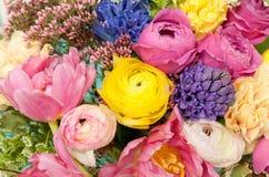 Plan rapproché coloré étonnant de bouquet Photographie stock libre de droits