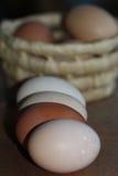 Plan rapproché coloré d'oeufs se situant dans une ligne devant le panier avec l'oeuf Photos stock