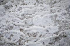 Plan rapproché congelé de crique Images libres de droits