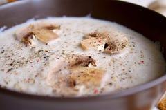 Plan rapproché crème de potage de champignon de paris Photos stock