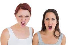 Plan rapproché cris femelles fâchés de deux de jeunes amis Images libres de droits