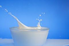 Plan rapproché d'éclaboussure de lait images libres de droits