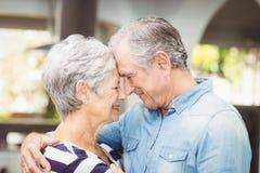 Plan rapproché d'épouse de embrassement de mari supérieur romantique Photo libre de droits