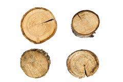 Plan rapproché d'anneaux d'arbre d'isolement sur le fond blanc photographie stock