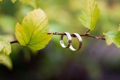 Plan rapproché d'anneaux de mariage Images stock