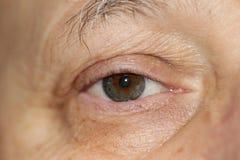 Plan rapproché d'oeil humain, oeil sain photographie stock