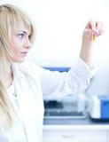Plan rapproché d'un chercheur féminin Photos stock