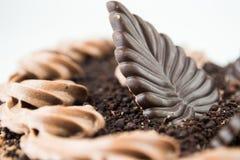 Plan rapproché d'un gâteau de chocolat Images stock