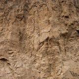 Plan rapproché d'un mur glaiseux de ravin comme fond environnemental de texture Image libre de droits