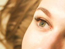 Plan rapproché d'un oeil du ` s de fille avec des mèches Le concept d'entretenir les yeux, prolongements de cil dans le salon images libres de droits